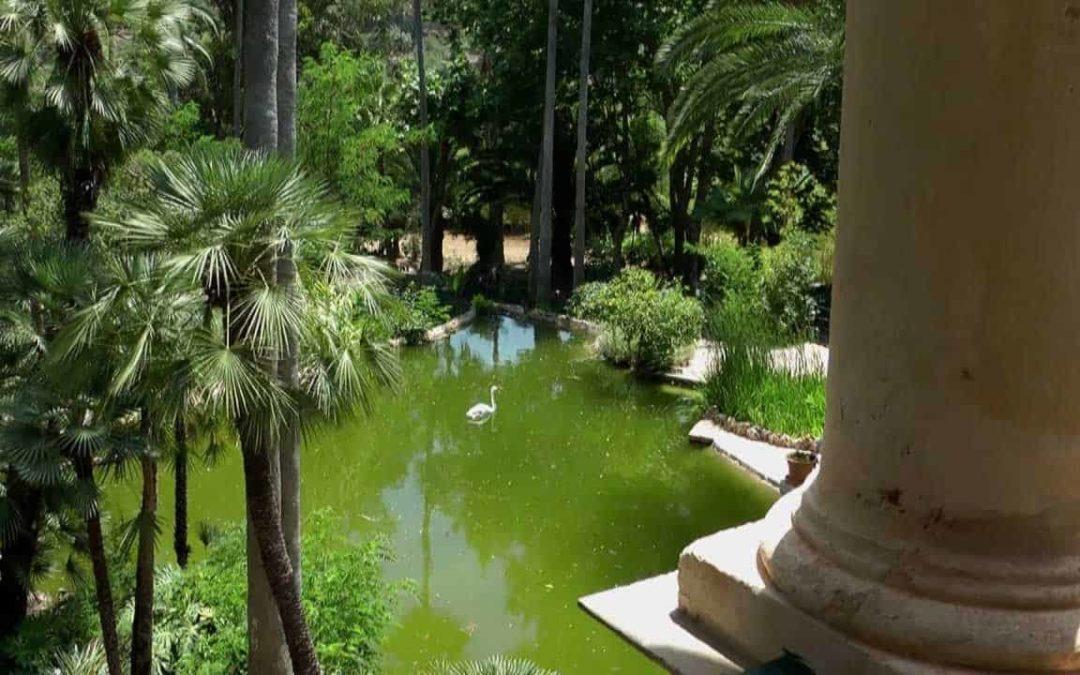 The Garden of Alfabia