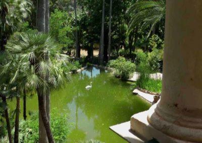 Alfabia Garden   Besttransfers Mallorca