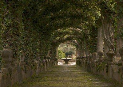Gardens Alfabia   Besttransfers Mallorca
