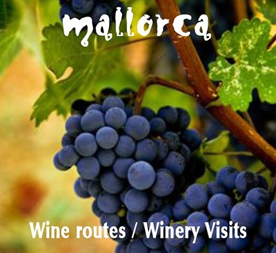 Wine route mallorca