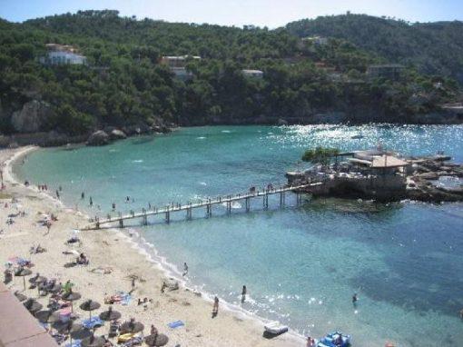 Camp de Mar Beach Majorca Taxi | Bestransfers Mallorca