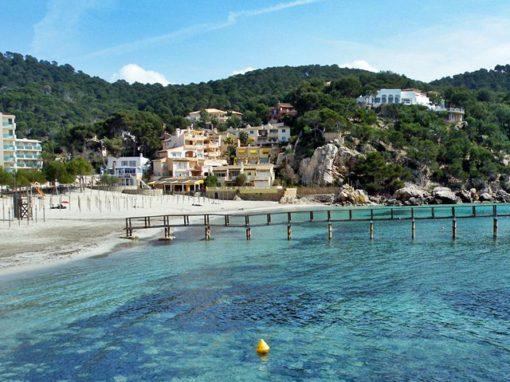Excursion Camp de Mar Beach Mallorca | Bestransfers Mallorca