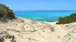 Playa Es Caragol Mallorca