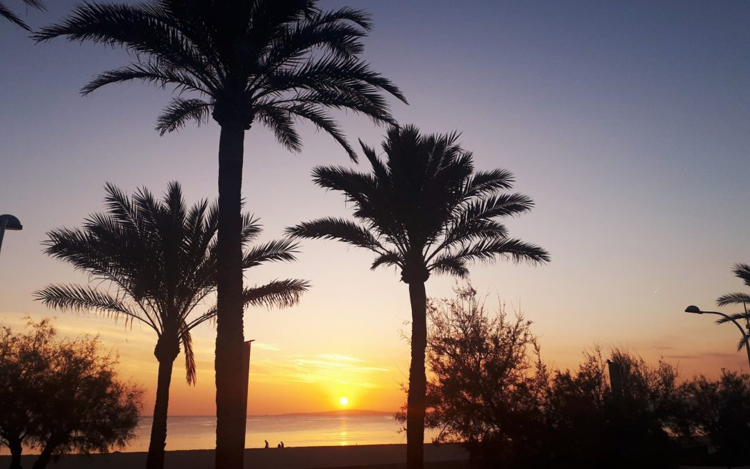 Best Mallorca Excursions