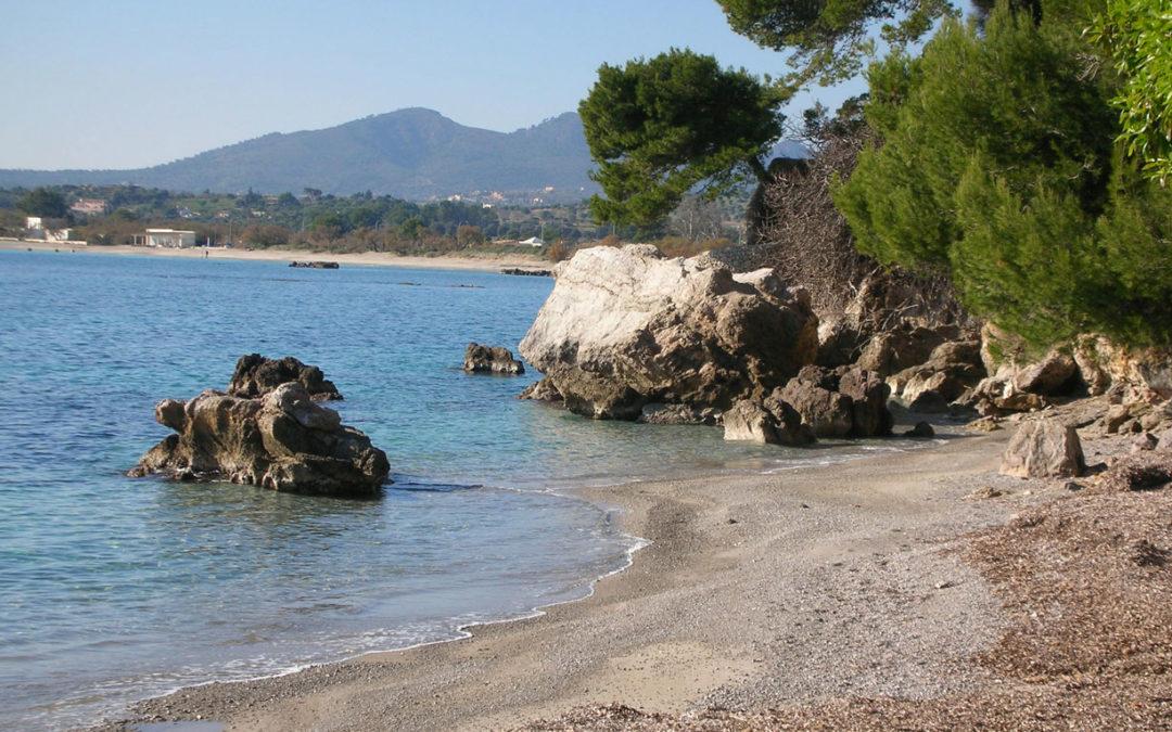 Costa dels Pins Mallorca