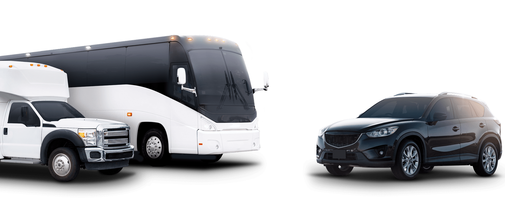Mini Buses & Coaches Transfers Services